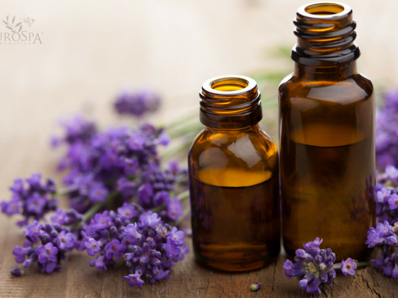 Healing Dry Skin with Lavender Oil