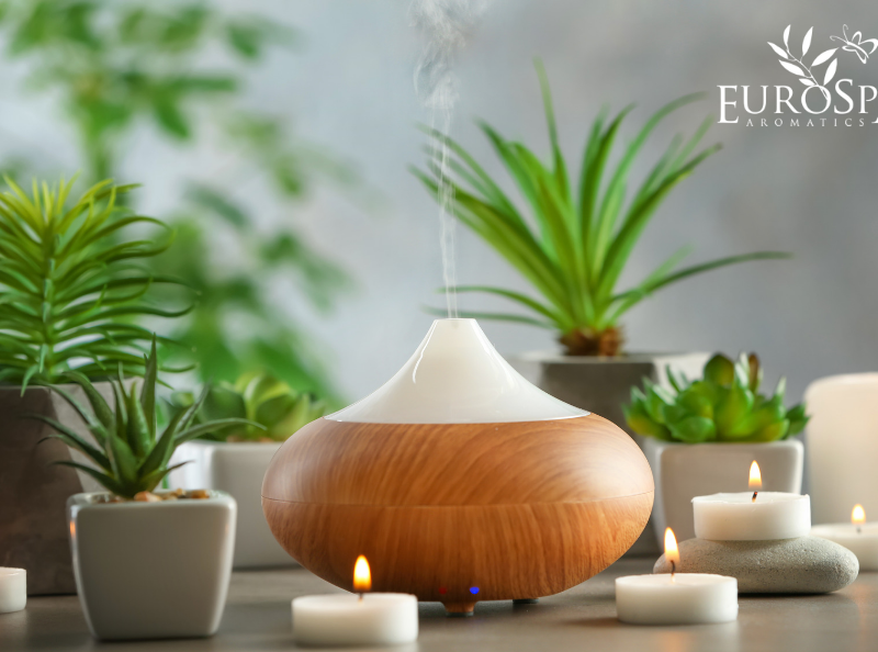Why You Should Diffuse Eucalyptus in Your Spa This Summer
