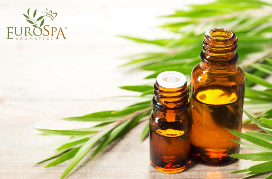 Simple Secrets to Rock Your Tea Tree Oil Use