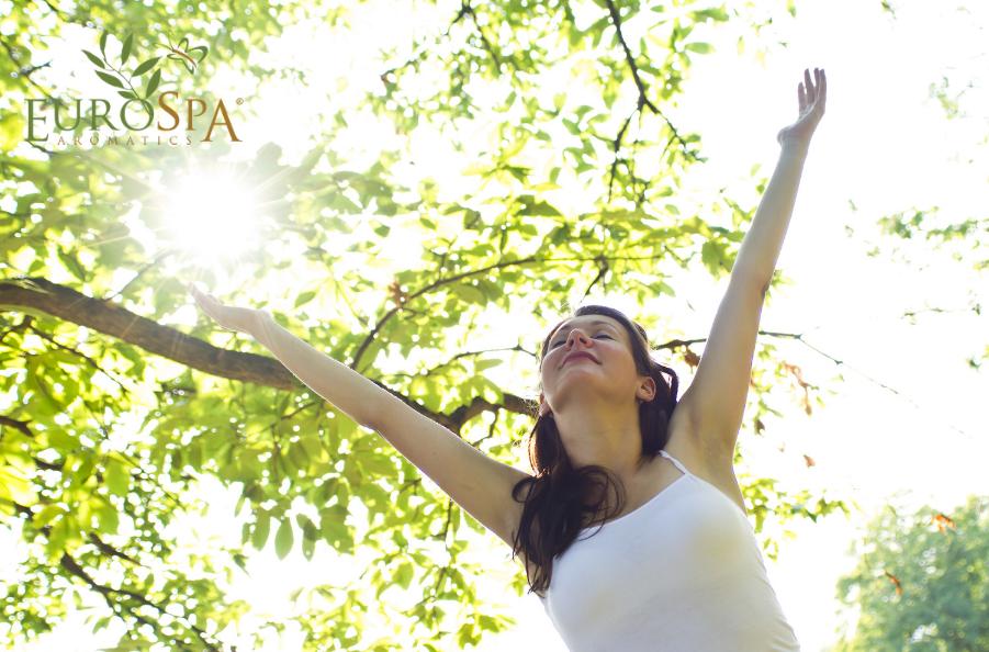Essential Oils to Increase Focus and Decrease Mental Fatigue
